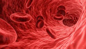 vazodilatovaná céva